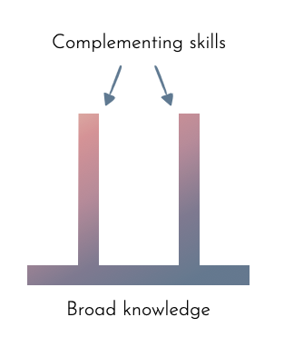 pi-shaped skills