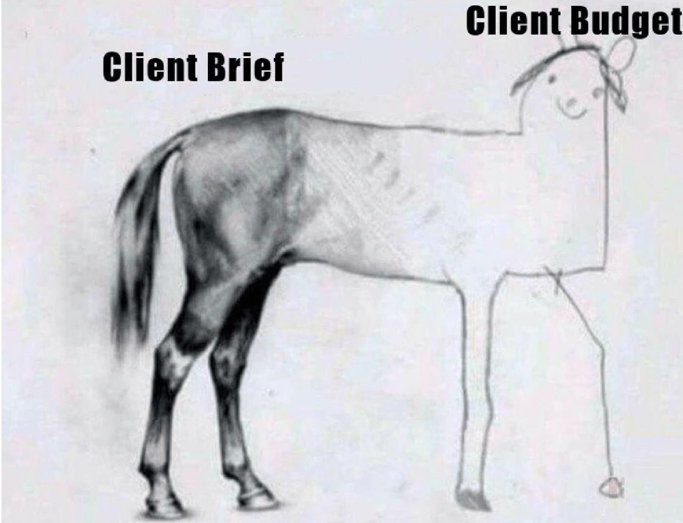 client budget vs client expectations